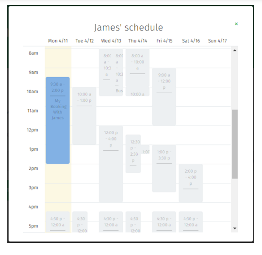 cleaner schedule